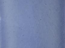 C19-36-8-Blue-Crackle